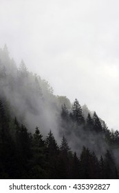 fog rising from mountain forest (dark lighting)