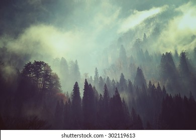 Fog and snow on mountain. Landscape in vintage style