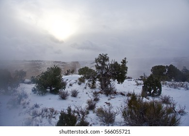 Fog and snow in  Shafer Canyon, Canyonlands Utah USA