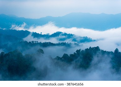 Fog step between mountain.