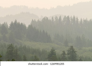 Fog in Toledo,on the Yaquina River and wooded inland from the Central Oregon Coast in the Pacific Northwest USA