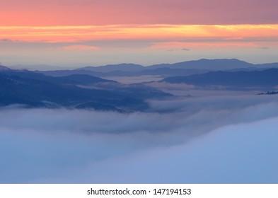 Fog  and twilight sky