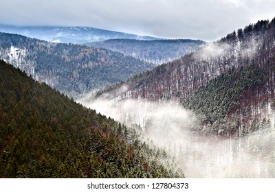 fog in winter Harz mountains, Germany, view from Ilsestein