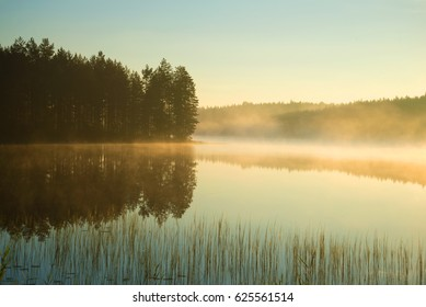 A foggy August morning on a forest lake. Southern Finland