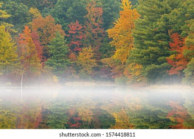 Foggy autumn landscape of the shoreline of Hall Lake with mirrored reflections in calm water, Yankee Springs State Park, Michigan, USA