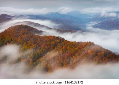 A foggy autumn morning at Cumberland Gap National Park