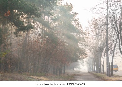 Foggy autumn morning on the outskirts of the city