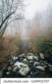 Foggy autumn view of the Tye River, near Crabtree Falls, in George Washington National Forest, Virginia.