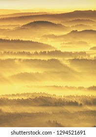 Foggy autumnal morning in mountain landscape. Forests valley with thick colorful mist
