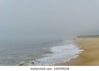 Foggy beach and sand dunes