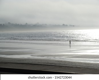 Foggy beach, Foggy shoreline, Foggy coast, East Coast shoreline, East Coast, Maine coast, Maine, Maine shoreline, walking on the beach, alone on the beach, by the ocean, foggy ocean, sea