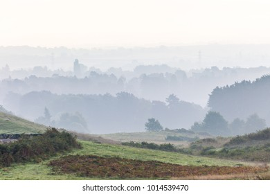 Foggy Bradgate park looking towards Leicester.