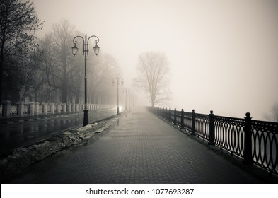 A foggy city road
