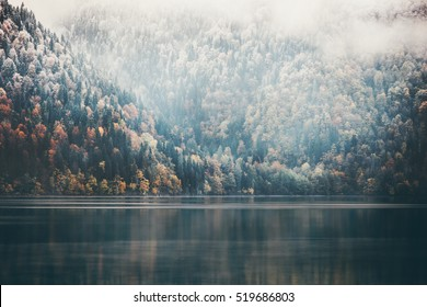 Foggy Coniferous Forest and lake wild landscape Travel serene scenic view