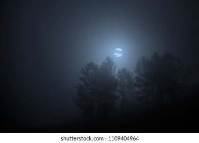 Foggy and creepy full moon night in the mountains. Added some digital noise.