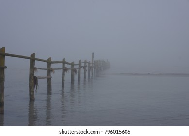 Foggy day at the baltic sea at spring time