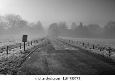 Foggy Day in Bramley, Hampshire