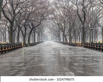 Foggy day during rain storm in winter on the Mall in Central Park