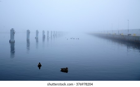 Foggy day over the Baltic sea in poland