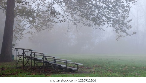 A foggy, fall morning at a soccer field with bleachers under a tree in Frick Park, Pittsburgh, PA, USA
