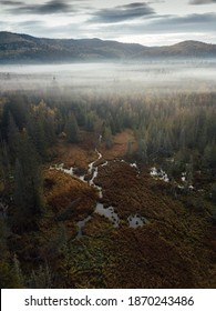 Paisaje boscoso. Temblorosa mañana, naturaleza escénica con niebla, capturada desde arriba con drones.