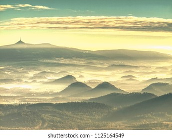 Foggy forest landscape in morning sun. Fantastic areial view into  forest landscape. Mountain forest in clouds