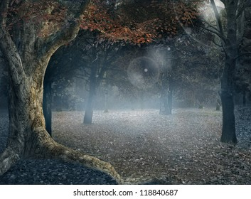 The Foggy Forest - Vintage Style