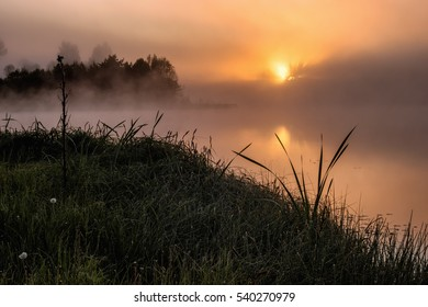 Foggy lake in the morning, Latvia, Summer.
