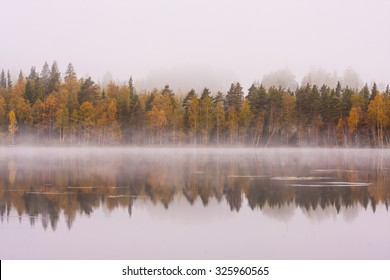 Foggy lake scape and vibrant autumn colors in trees at dawn
