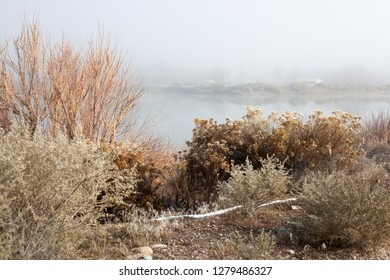 A foggy lake in western Colorado is framed by natural vegetation.