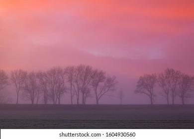 The foggy landscape at dramatic sunrise, Czech Republic