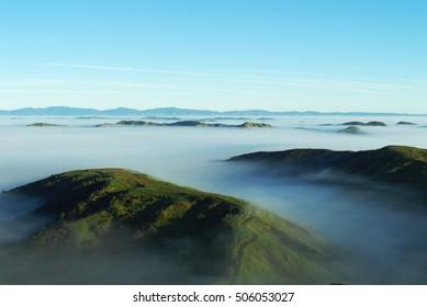 A foggy landscape in the Wairarapa, New Zealand