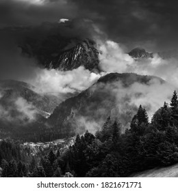 a foggy morning in the alps in black and white
