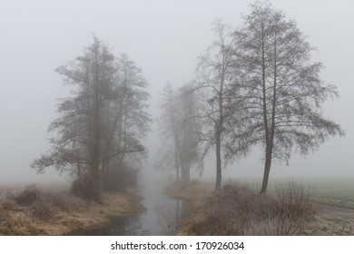 A foggy morning at the bavarian river Naab