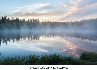 Foggy morning at forest pond landscape Finland