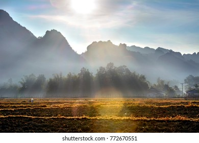 Foggy morning with mountains and forest