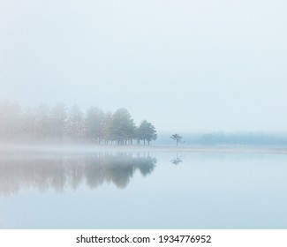 Foggy morning on a lake.
