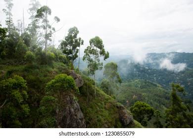 Foggy morning over Ella rock , Sri lanka