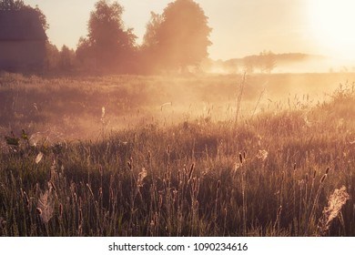 foggy morning in rural field at sunrise. natural summer (spring) background