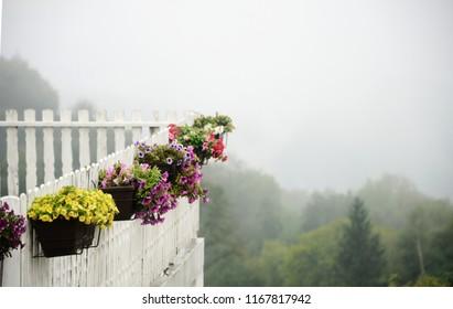 Foggy Morning In Serbia