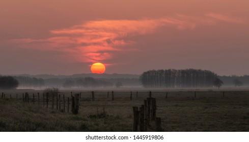 Foggy morning - Sunrise in Teufelsmoor near Worpswede / Bremen