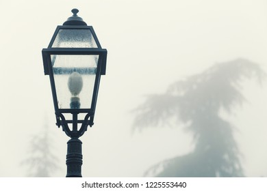 Foggy morning, vintage street lamp of a park, isolated on white