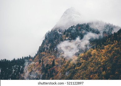 Foggy Mountains with Autumn Coniferous Forest Landscape background Travel serene scenic aerial view
