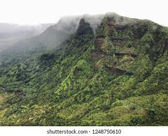 Foggy mountaintop on Kauai, Hawaii