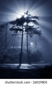 A foggy night with beautiful glowing beam of light