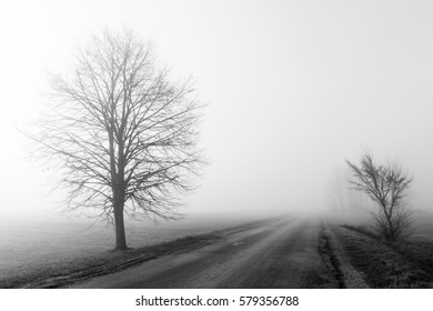 Foggy road in black and white