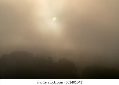 foggy sky,nara,japan