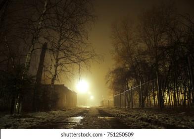 Foggy street, dark trees, abandoned place