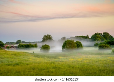 Foggy summer morning on  meadow. Scenic background, Summer landscape. Countryside in the morning. Thick fog.