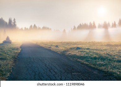 Foggy summer sunrise in Durmitor Nacionalni Park with old country road. Misty morning view of Montenegro countryside, Zabljak town location. Beautiful world of Mediterranean countries.